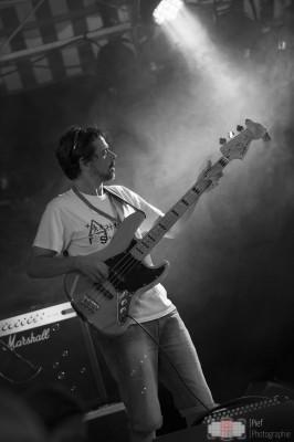 Les_Vinestivales_2015-Les_Petits_dhomme-3-site